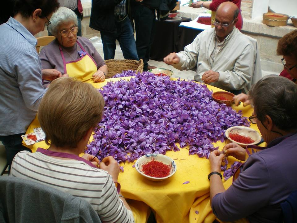 Processing of Saffron filaments from the flowers